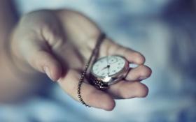 Обои часы, рука, цепочка