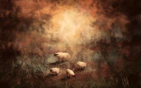 Обои животные, арт, овечки, овца