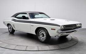 Обои белый, фон, Додж, 1971, Dodge, Challenger, передок