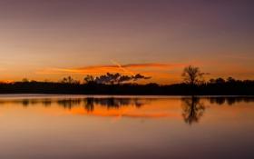 Картинка небо, облака, деревья, озеро, вечер, силуэт, зарево
