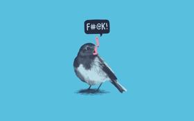 Обои птица, еда, проблема, червяк