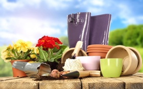 Обои цветы, горшки, лопатка, луковицы, садоводство