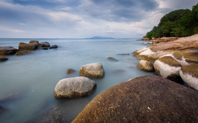 Обои камни, берег, деревья, небо, тучи, море