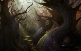 Картинка лес, деревья, птицы, человек, арт, мгла, cloudminedesign