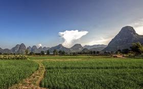 Картинка поле, облака, горы, фото, люди, работа, пейзажи