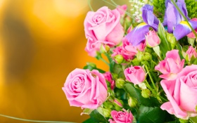 Обои бутоны, розы, букет, фон, ирисы