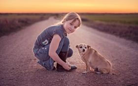 Картинка дорога, собака, девочка