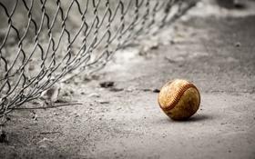 Обои сетка, спорт, мяч