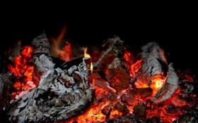 Обои пепел, огонь, костер, дрова, тлеет