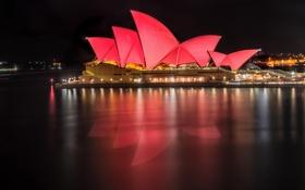 Картинка ночь, город, освещение, Австралия, Сидней, огня, оперный театр