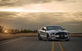 Обои дорога, закат, Mustang, Ford, Shelby, GT500, мустанг