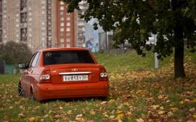 Обои Priora, ВАЗ, авто, корма, машина, auto, осень