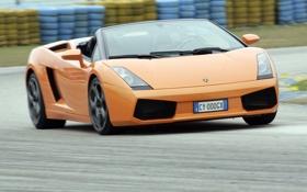 Картинка дорога, асфальт, оранжевый, движение, суперкар, кабриолет, спайдер