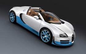 Картинка авто, машины, спорт, bugatti veyron, бело, grand sport vitesse, синий.