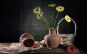 Картинка цветы, фон, натюрморт