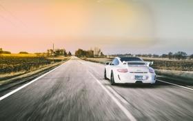 Обои дорога, белый, 911, Porsche, сзади, white, спорткар