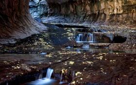 Обои листья, скалы, юта, ручей, тоннель, сша, Zion National Park
