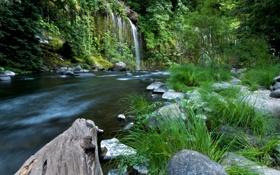 Обои ручей, камни, Калифорния, США, водопады, Mossbrae falls