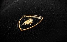 Обои капли, чёрный, значок, Lamborghini, Ламборджини, Ламбо, эмблема