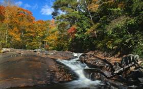 Картинка осень, лес, деревья, река, скалы, поток, Канада