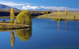 Обои пейзаж, обои, трава, деревья, река, вода