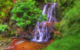 Картинка зелень, лес, трава, ручей, камни, водопад, мох