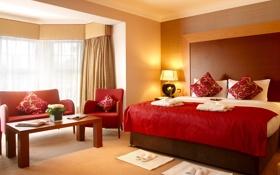 Обои цветы, комната, кровать, кресло, подушки, окно, светильник