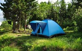 Обои зелень, поляна, палатка, туризм
