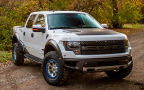 Картинка Ford, решетка, форд, передок, фары, автомобиль, F-150