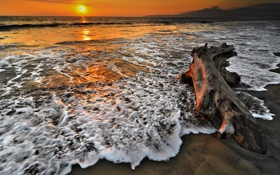 Обои песок, бревно, закат, пена, море