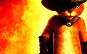 Обои красный, огонь, шляпа, Кот в сапогах, Puss in Boots