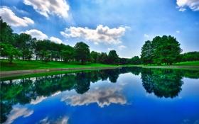 Картинка зелень, деревья, пейзаж, озеро, отражение, Природа