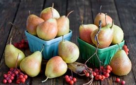 Обои осень, ягоды, посуда, фрукты, груши
