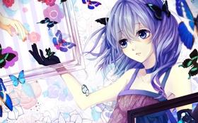 Картинка рамки, Девушка, бабочки, цветы