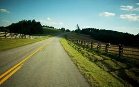 Обои дорога, поле, солнце, лучи, деревья, пейзаж, природа