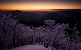 Картинка зима, небо, снег, деревья, горы, рассвет, япония