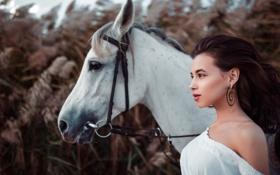 Картинка девушка, конь, Aliya Lando, Ivan Gorokhov