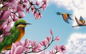 Обои облака, небо, птицы, дерево, клюв, живопись, арт