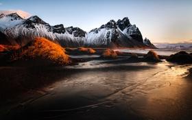 Обои небо, трава, горы, Исландия, Vestrahorn, Stockksness, чёрный песок