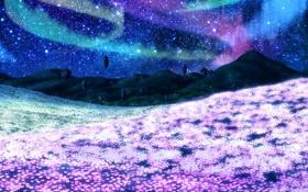 Картинка поле, звезды, цветы, горы, ночь, северное сияние, арт