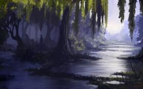 Картинка лес, вода, деревья, болото, чаща, арт