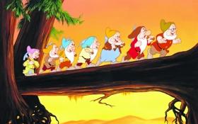Обои дерево, мультфильм, гномы, Disney, поход, Дисней, Snow White and The Seven Dwarfs