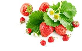 Обои цветы, ягоды, листва, земляника, клубника