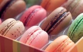 Картинка цвета, еда, color, macaron, макарун, Stock Wallpapers, Moto X