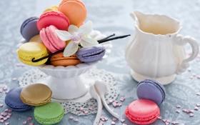 Обои печенье, десерт, орхидея, сладкое, ваниль, ассорти, Anna Verdina