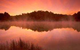 Картинка небо, вода, деревья, пейзаж, закат, природа, озеро