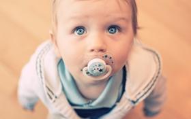 Обои взгляд, мальчик, малыш, соска, ребёнок, голубоглазый