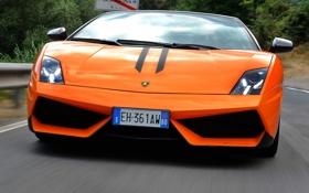 Обои оранжевый, кабриолет, lamborghini, вид спереди, спайдер, gallardo lp570-4, spyder performante