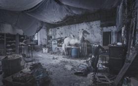 Обои листья, зонтик, лошадь, стулья, гараж, инструменты, манекен