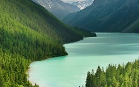 Картинка деревья, горы, озеро, тайга